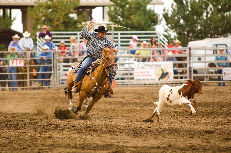 Deschutes County Fair And Expo Center Deschutes County Motocross Racing Bmx Racing