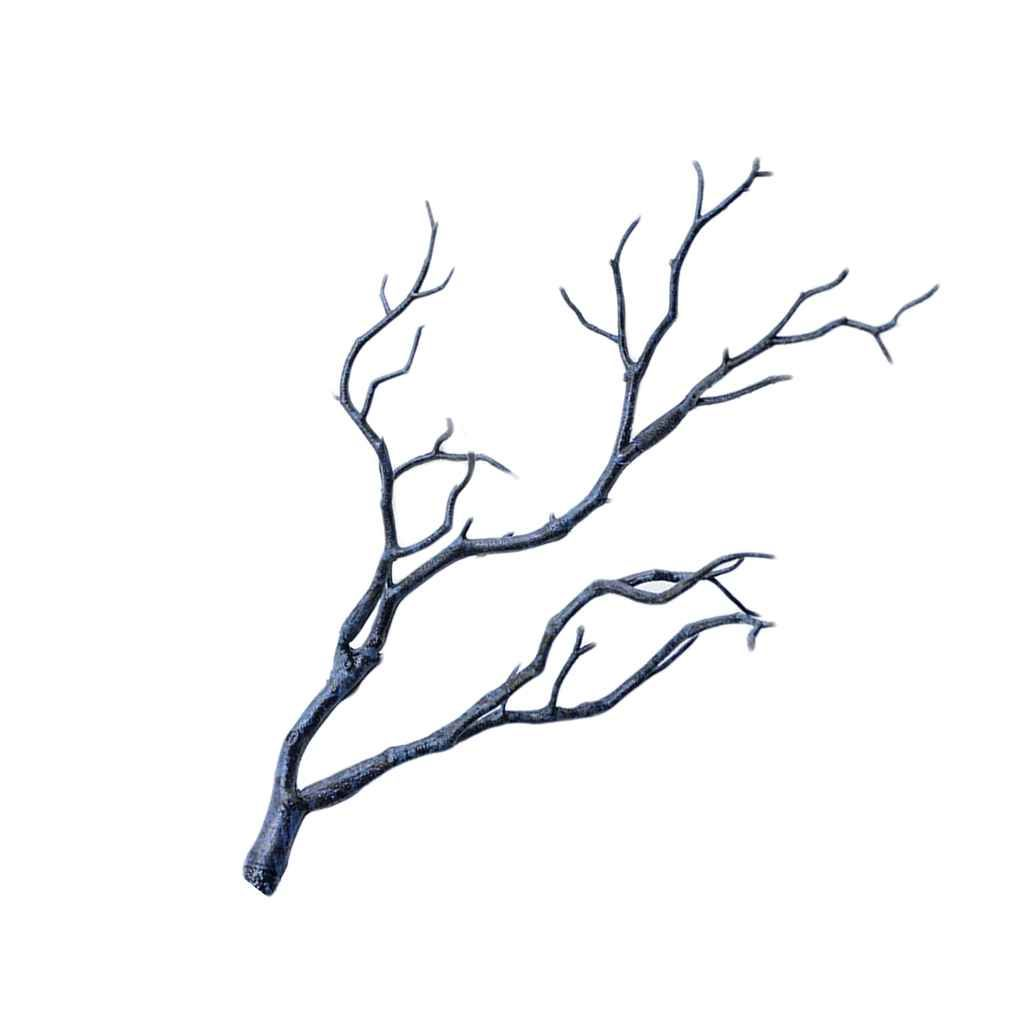 Home Dried Tree Branches Dry Tree Branches Diy