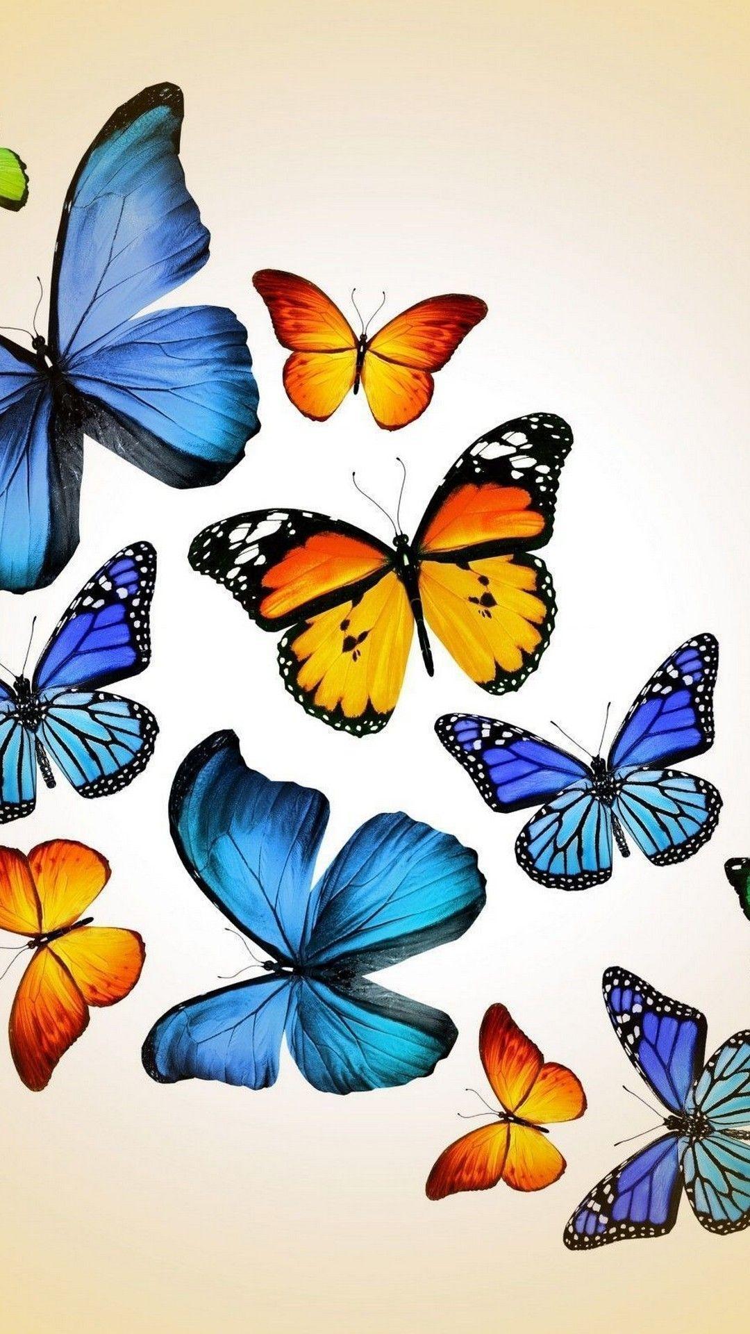 Blue Butterfly Cellphone Wallpaper 1080x1920 | Cellphone ...