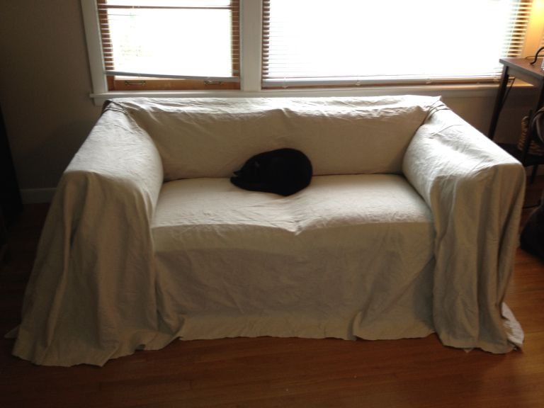 design diva a couple of cats and a canvas couch cover leslie rh pinterest com