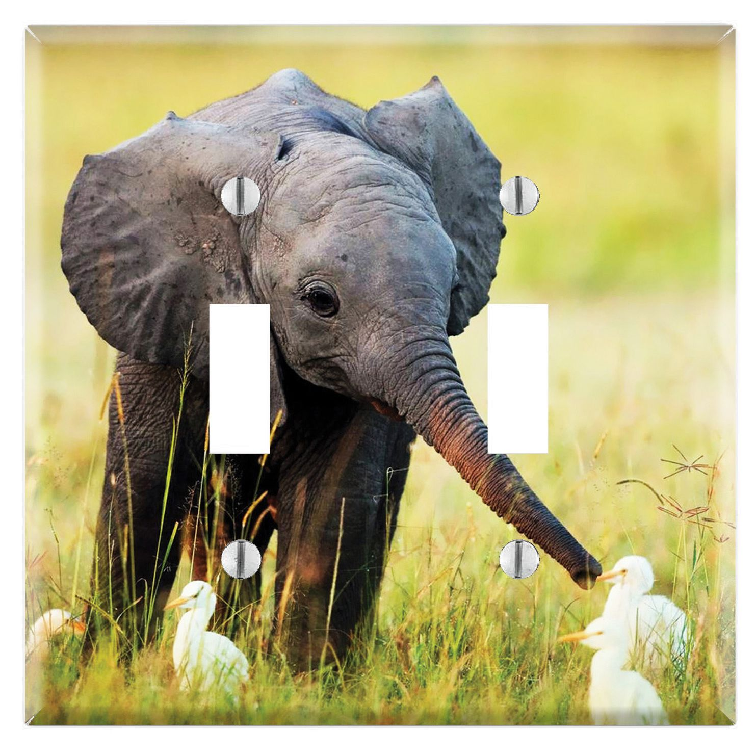 Baby Elephant and Egrets Decorative Wall Plate Cover (Single Toggle ...