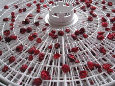 homemade craisins - totally doing this w/ the cranberries in the freezer