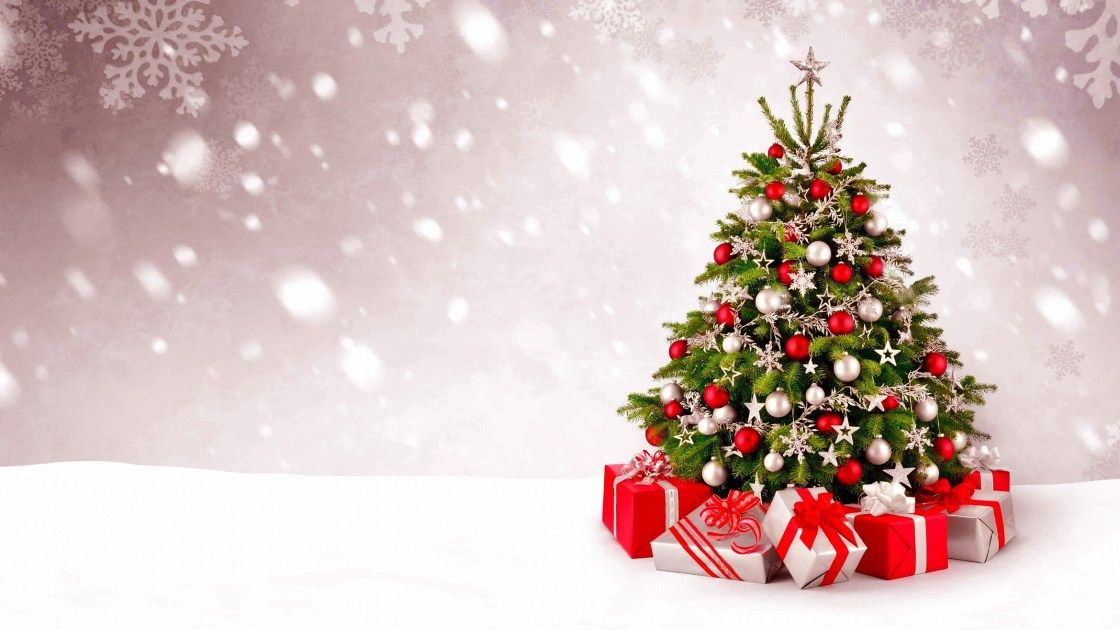 Beau Sapin De Noel Beautiful Christmas Tree Fond Ecran Noel Sapin De Noel Arbres De Noel Elegants