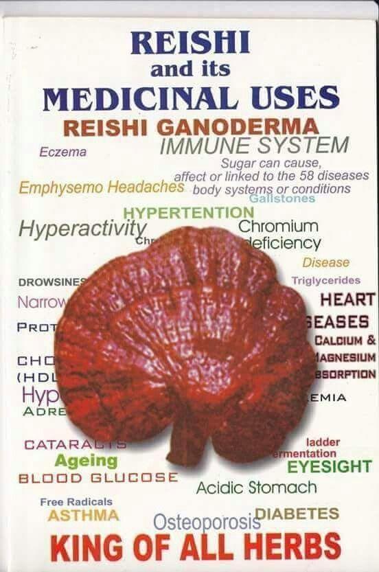 """Image result for """"Ganoderma King of Adaptogens"""""""