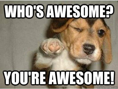 whos awesome youre awesome - Awesome Dog | Funny inspirational quotes, Funny motivational quotes, Good day quotes