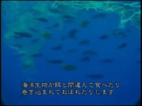 プラスティックが襲うハワイの海 ■もうひとつの地球への旅 No10
