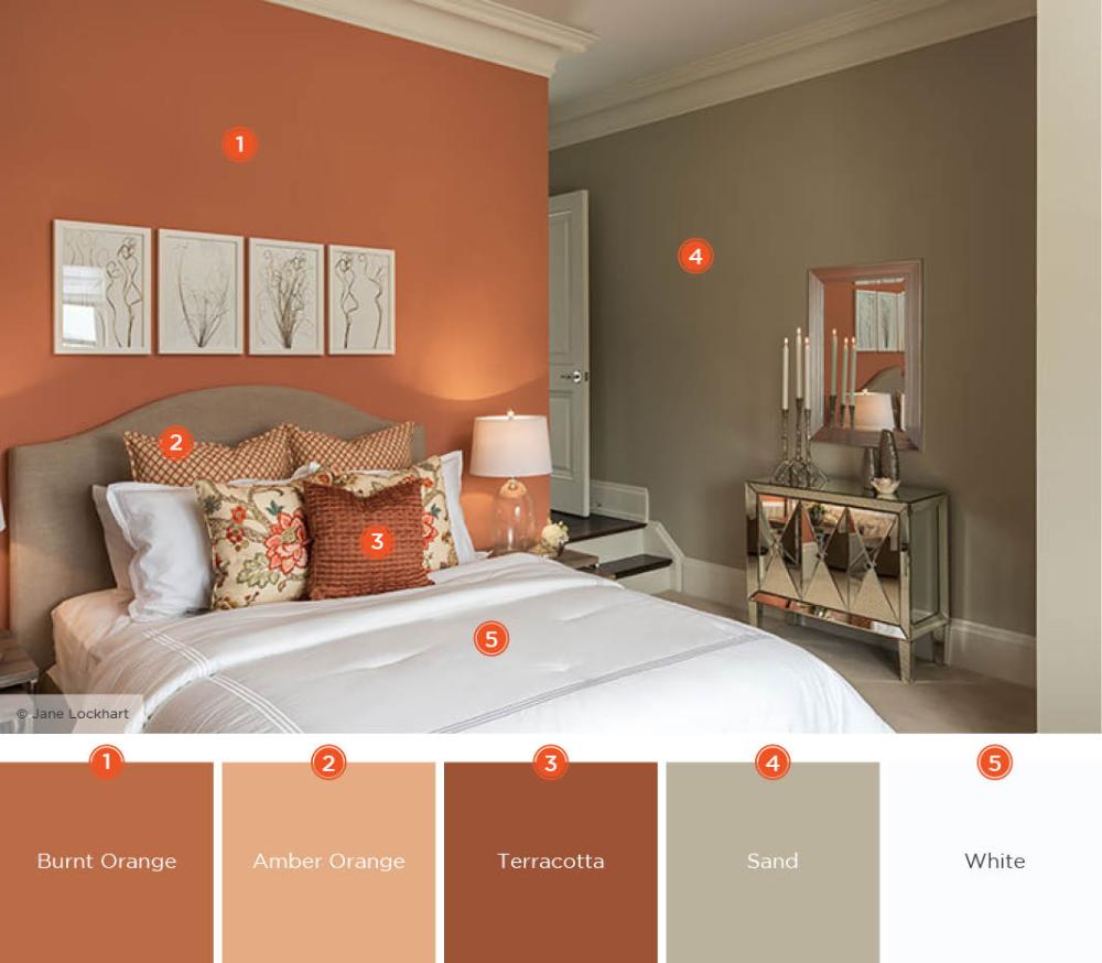 burnt orange white color scheme Google Search in 2020