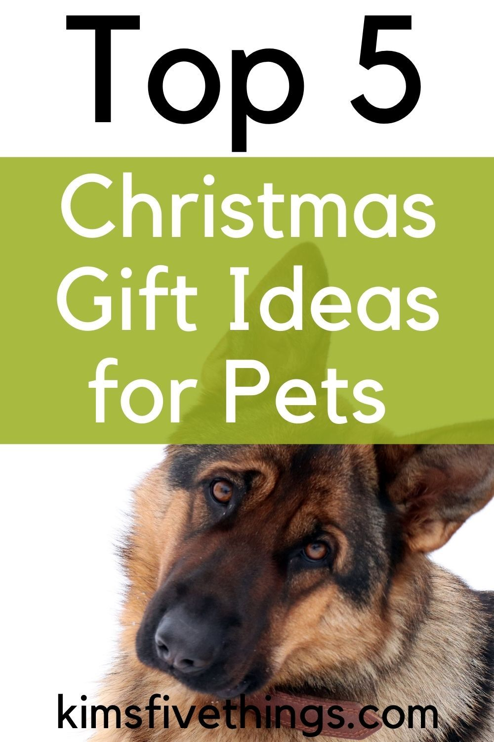 Christmas + Presents + Dogs + Cats + Pets + 2020 Top 5 Christmas Gifts for Pets 2020 | Kims Home Ideas in 2020