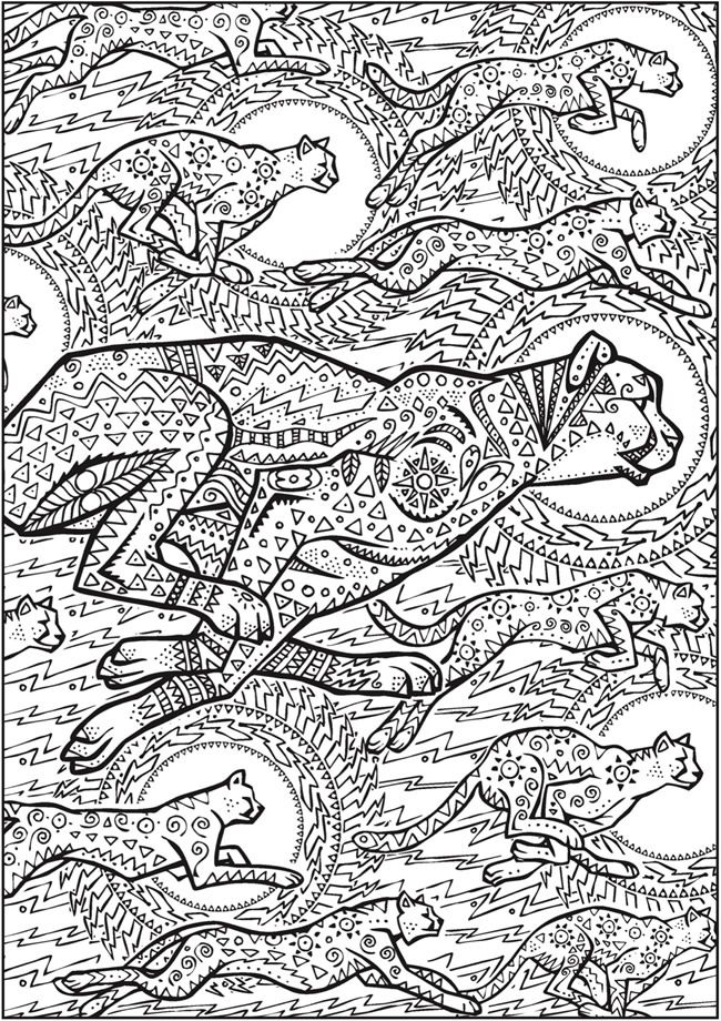 Creative Haven Untamed Designs Colouring Book - Page 7 of 7 ...