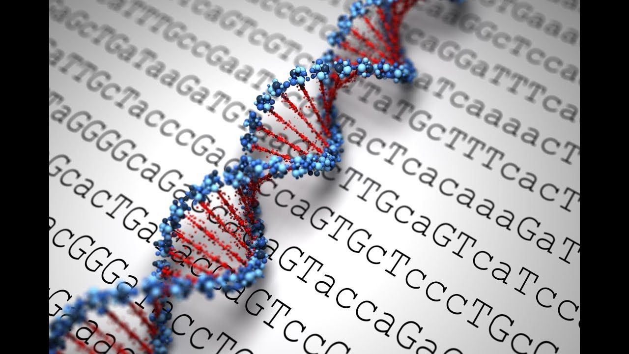 Pin On Human Genome S Frontier May Hold Keys To New Drugs