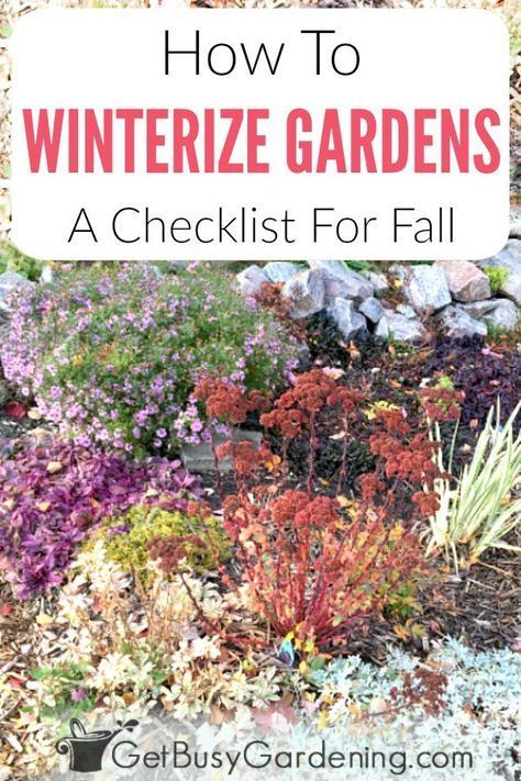How To Winterize Your Garden In The Fall is part of Winter garden Furniture - Learn everything you need to know about how to put your garden to bed for the winter, and get a detailed checklist for winterizing gardens in the fall