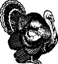 The Turkey Shoot Turkey Clip Art Black Area Rugs Clipart Black And White