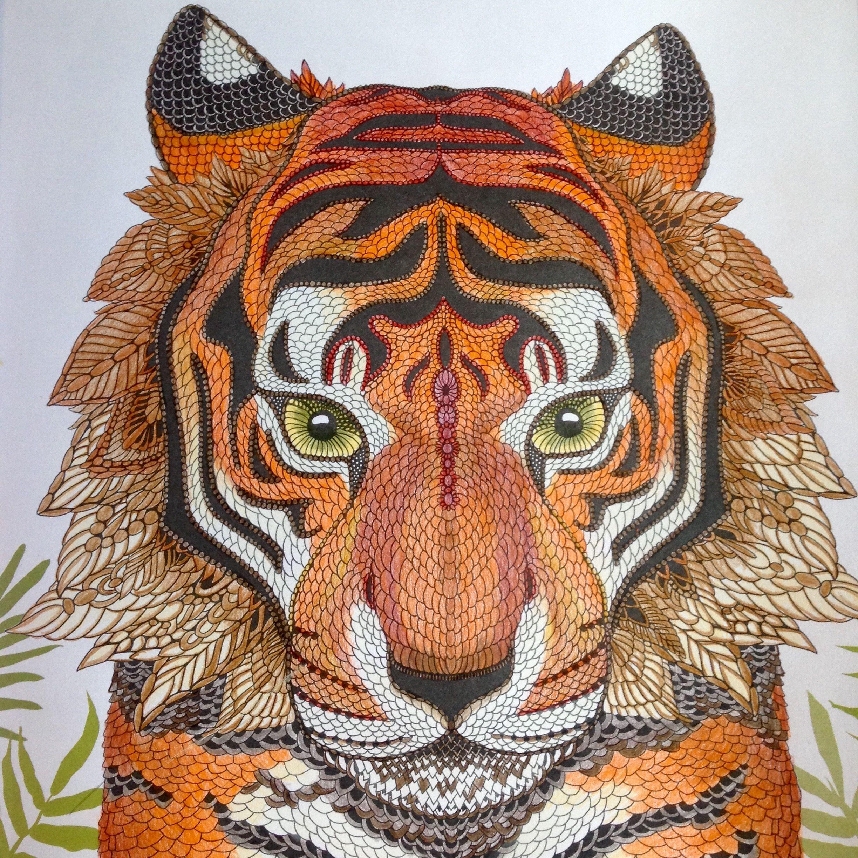 Tiger The Menagerie Animal Portraits To Color Kleurboek Kleuren Dieren