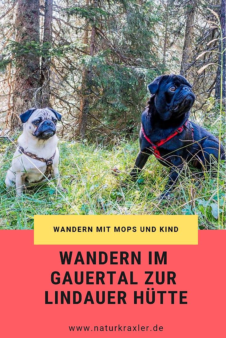 Wanderung Zur Lindauer Hutte Im Gauertal Mops Hunde Urlaub Mit Hund