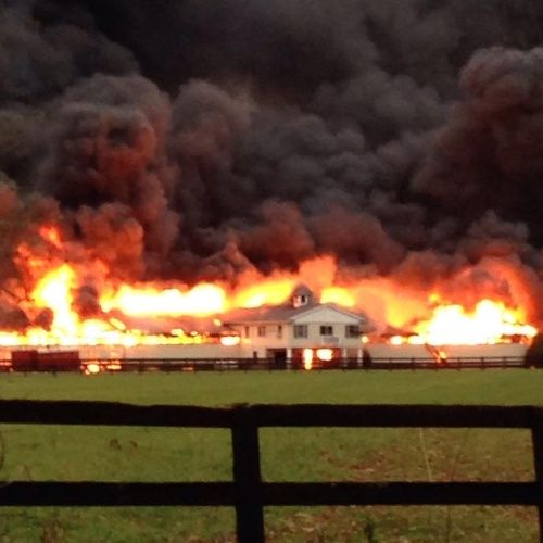 18 Horses, 1 dog and 1 donkey were killed in a horrific fire near Edwardsburg, Indiana. 15 fire departments responded to the blaze, and it took 80 firefighters nearly 8 hours to get the inferno und...