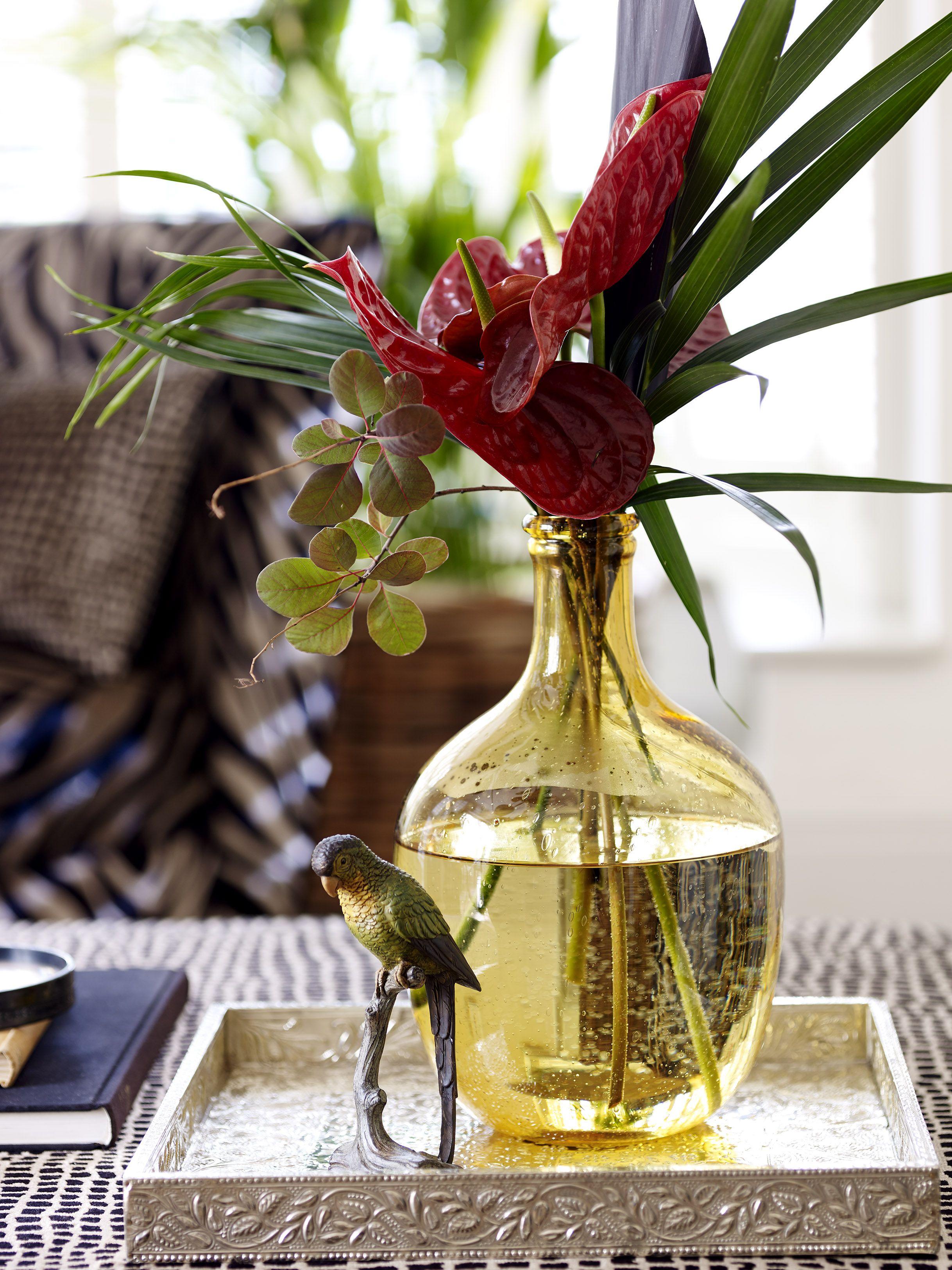 tropical vase styling botanical shoot madagascar