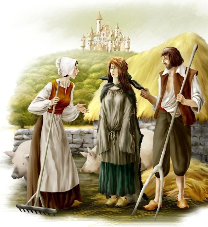 Картинки сказке ослиная шкура