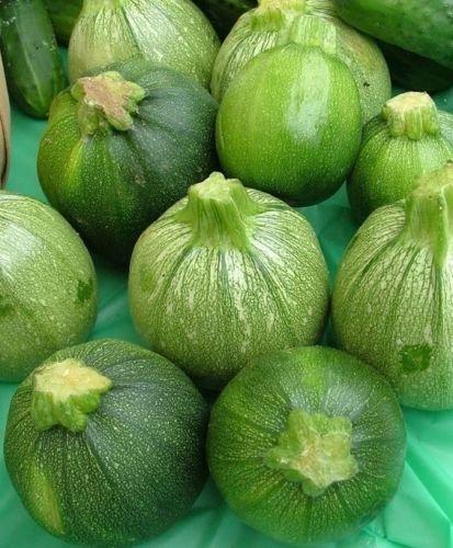 30 Round Zucchini Summer Squash-Non GMO-Open Pollinated-Organic