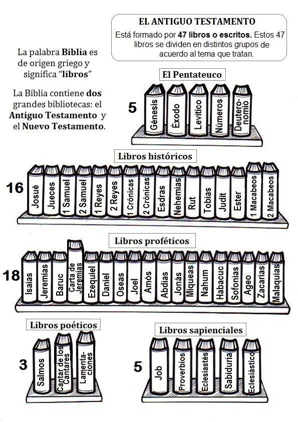 Libros del Antiguo Testamento  Dibujos para colorear en