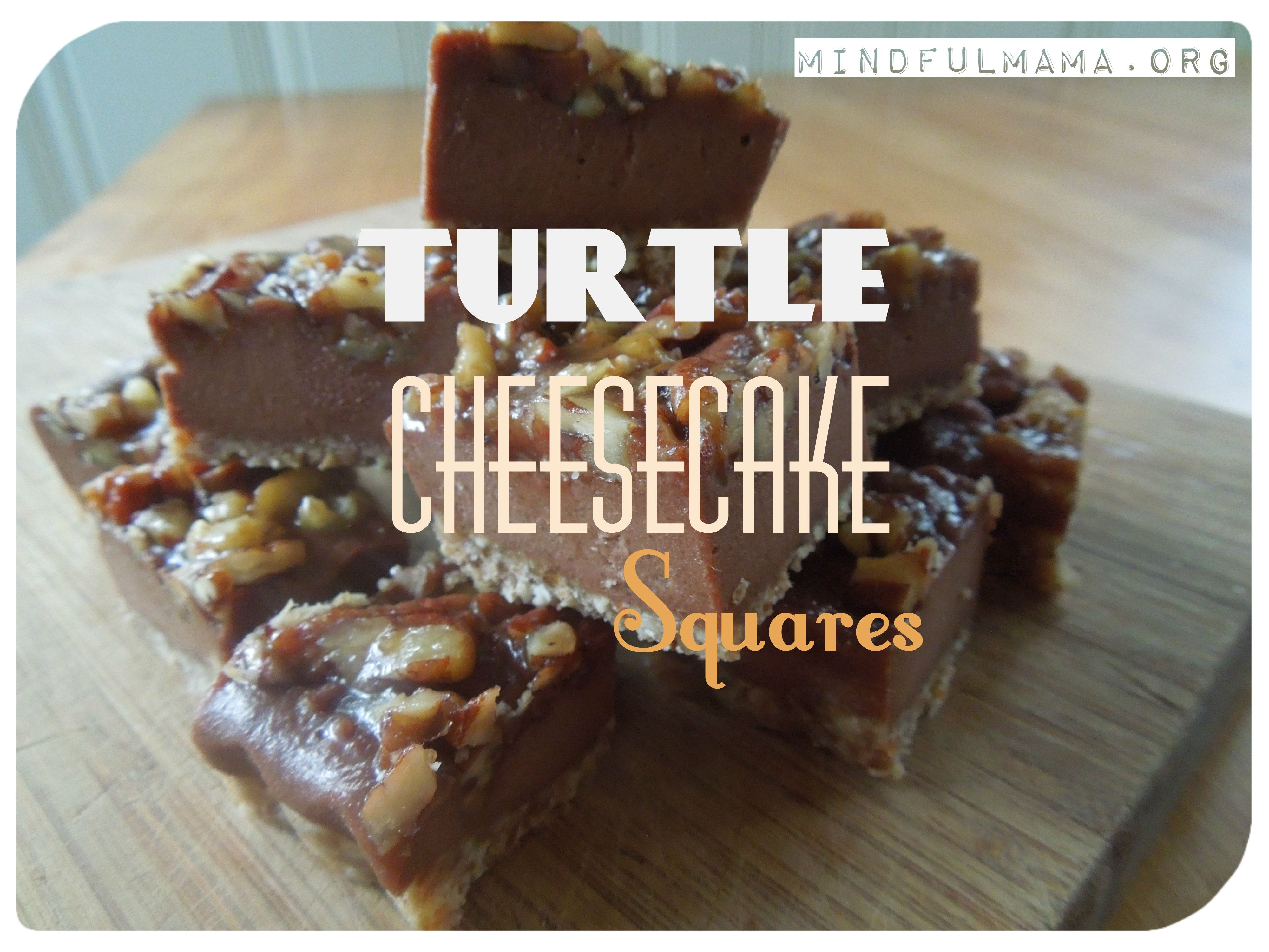 Turtle Cheesecake Squares Grain And Dairy Free Recipe Turtle