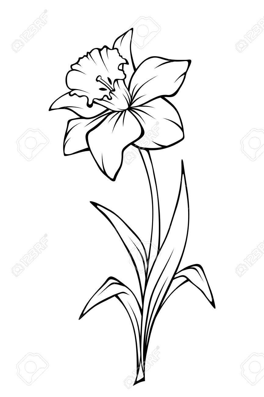 Pin on Plantillas y dibujos
