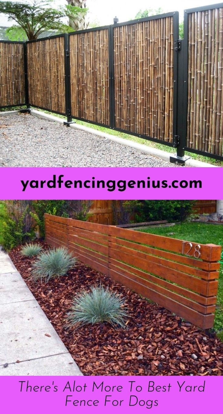 Read About Backyard Fence Options With Images Backyard Fences