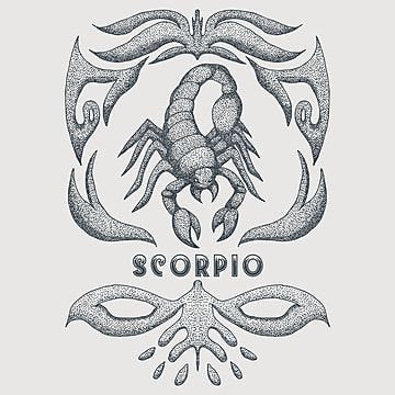 Scorpio Zodiac Vintage Vector Illustration Animal Art Astrological Png And Vector With Transparent Background For Free Download Vector Illustration Vector Pattern Illustration