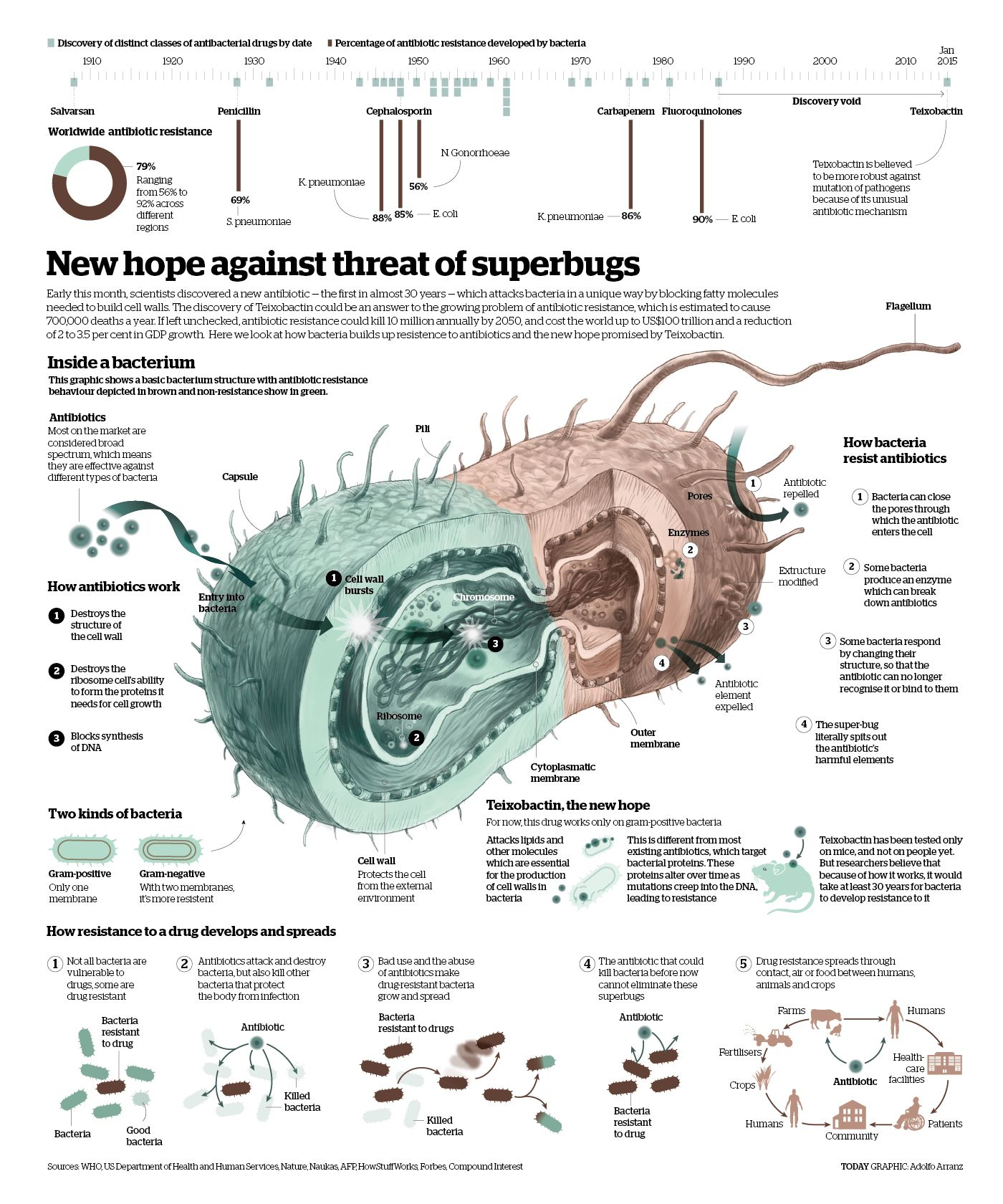 Promising antibiotic discovered in microbial 'dark matter' http://www.nature.com/news/promising-antibiotic-discovered-in-microbial-dark-matter-1.16675?WT.mc_id=TWT_NatureNews