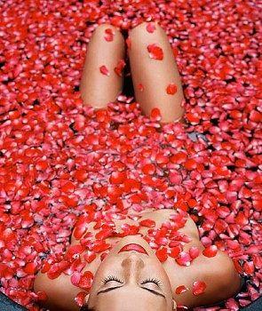 bain de p tale de roses tr s romantique pour la saint. Black Bedroom Furniture Sets. Home Design Ideas