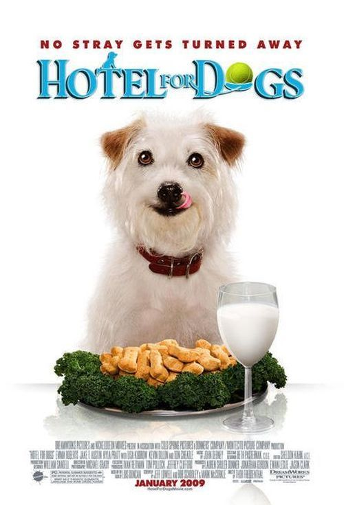 Hotel for Dogs #movies #films | Dog hotel, Dog movies, Dogs