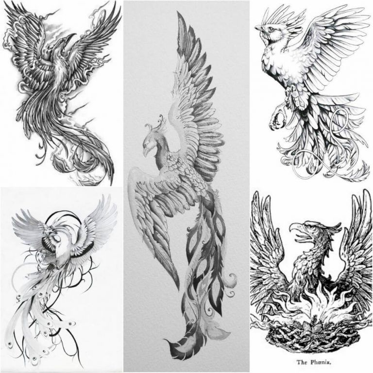 Phoenix Tattoos Meaning Small Phoenix Tattoos Japanese Phoenix Tattoos Small Phoenix Tattoos Japanese Phoenix Tattoo Phoenix Back Tattoo