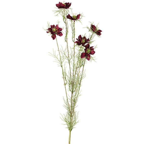 OKA Faux Nigella Flower Stem (€11) ❤ liked on Polyvore featuring home, home decor, floral decor, flowers, fillers, plants, nature, purple, fake flower stems and silk flowers