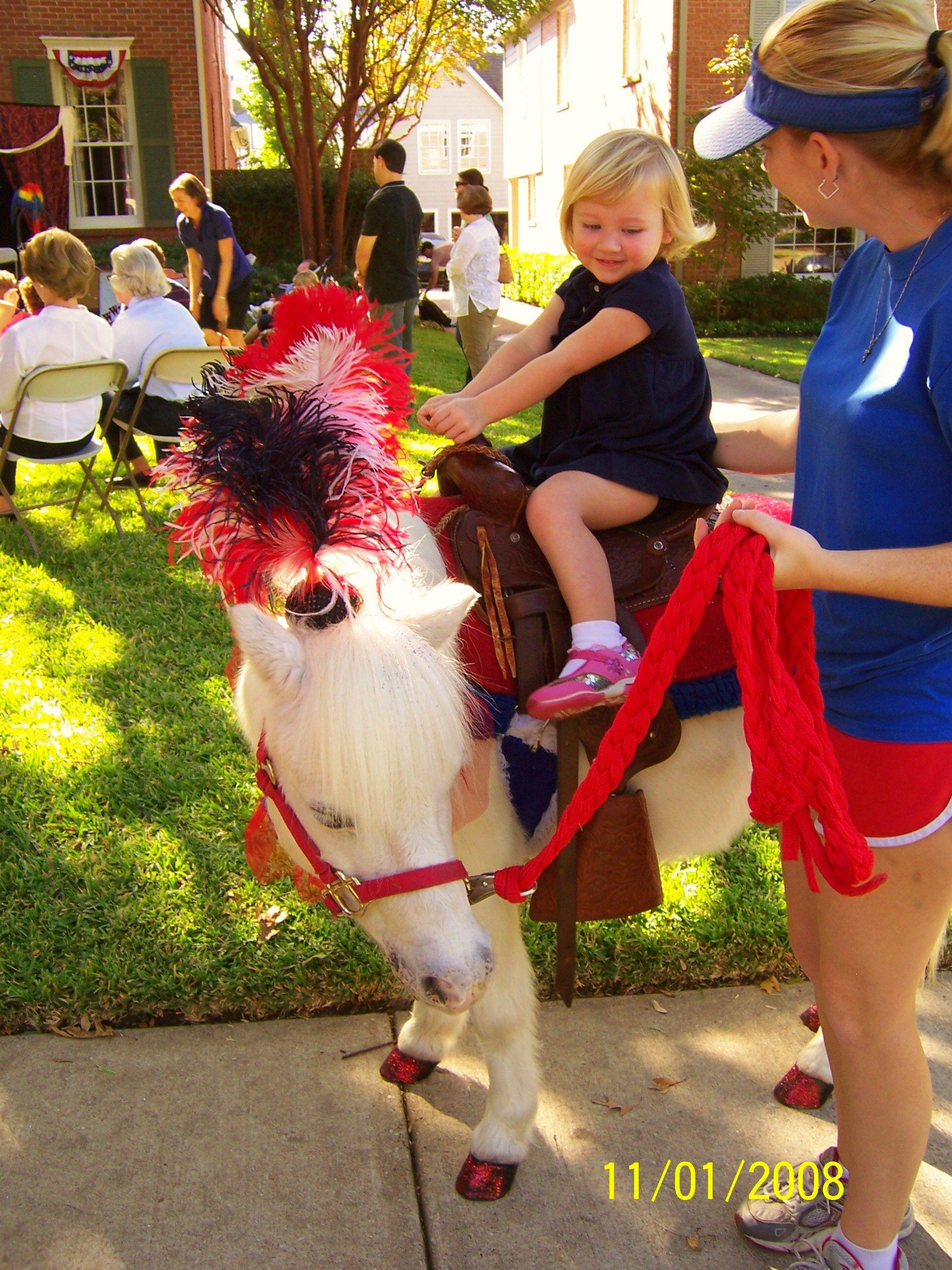 PONY RIDES, Dallas PETTING ZOO, Pony PARTY, Dallas, TX