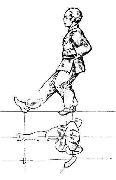 Tai Ji Quan Eight Basic Stances Positions Phoenix Dragon Kung Fu Academy Martial Arts Techniques Martial Arts Styles Karate Martial Arts