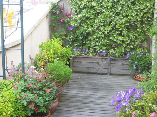 Pin de paola lopez cervantes en jardines nueva casa for Diseno de fuente de jardin al aire libre