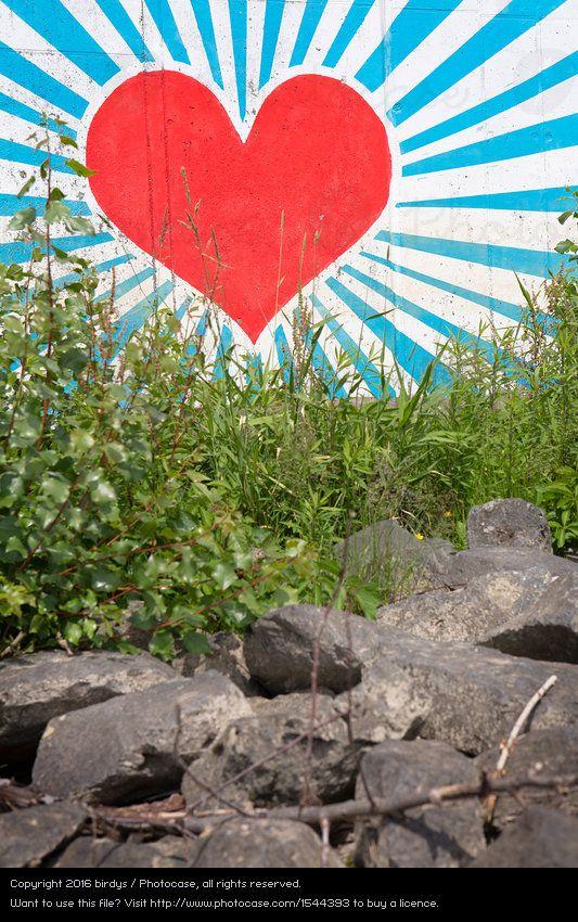 Foto 'Herz hinter Gras' von 'birdys'