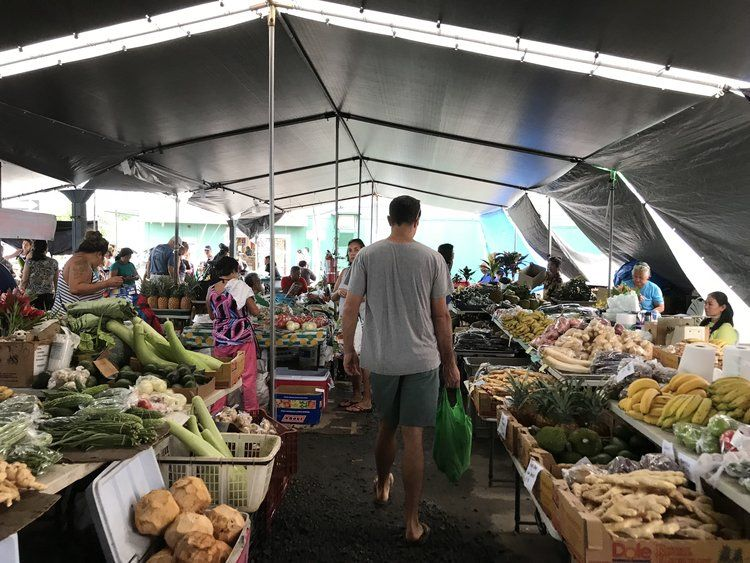 48 hours in hilo against the current hilo farmers