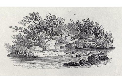 "Photo of Gerahmtes Poster A Bend in the River from ""History of British Birds, Volume 2: Water Birds"", 1804 von Thomas Bewick East Urban Home Größe: Klein"