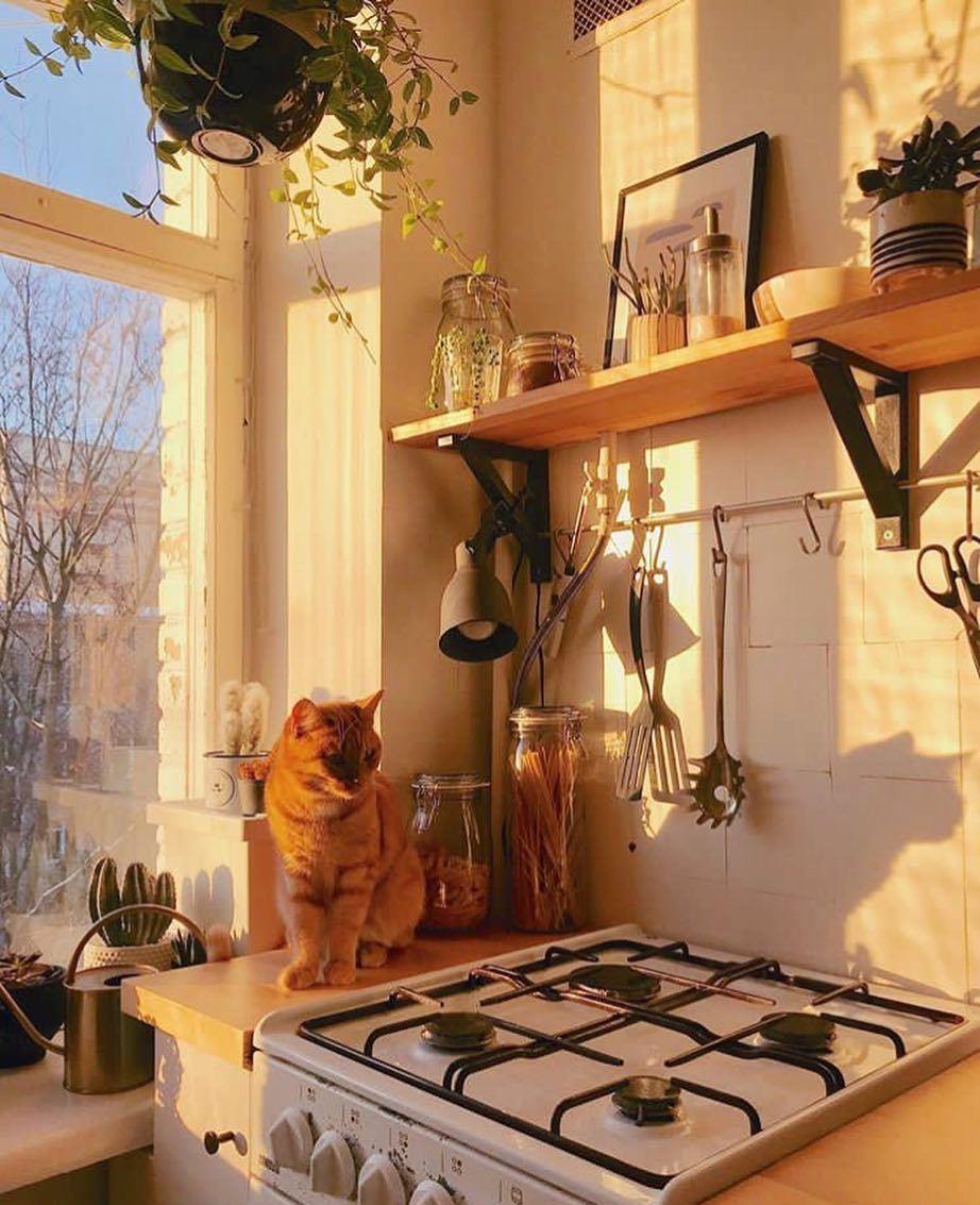 Get Home Design Ideas: Decor , Home , Home Decor