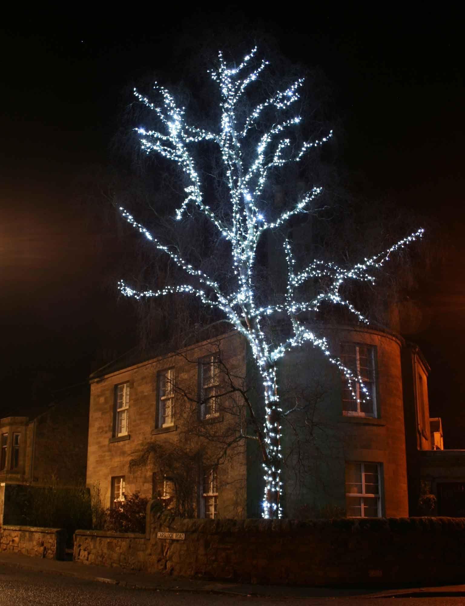 Led Weihnachtsbeleuchtung Baum.Coole Weihnachts Lichter Für Verkauf Weihnachten Baum Licht Sets Im