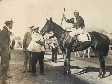 Alcibiades 1927 Filly Supremus Regal Roman By Roi Herode 4 C X4 C To Domino 4x4 To Isinglass 5 C X5 C X5 F To Isonomy 5x5 To St In 2021 Horses Filly Racehorse