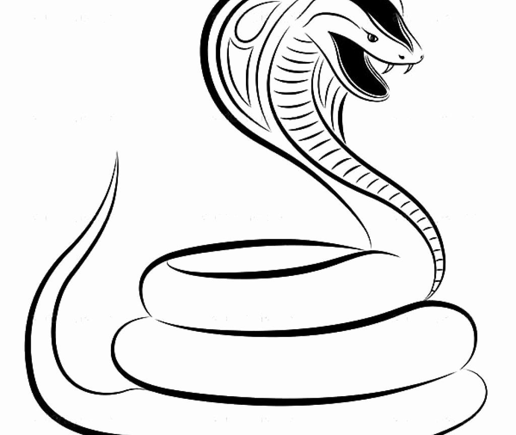 Pin On Best Coloring Page Ideas