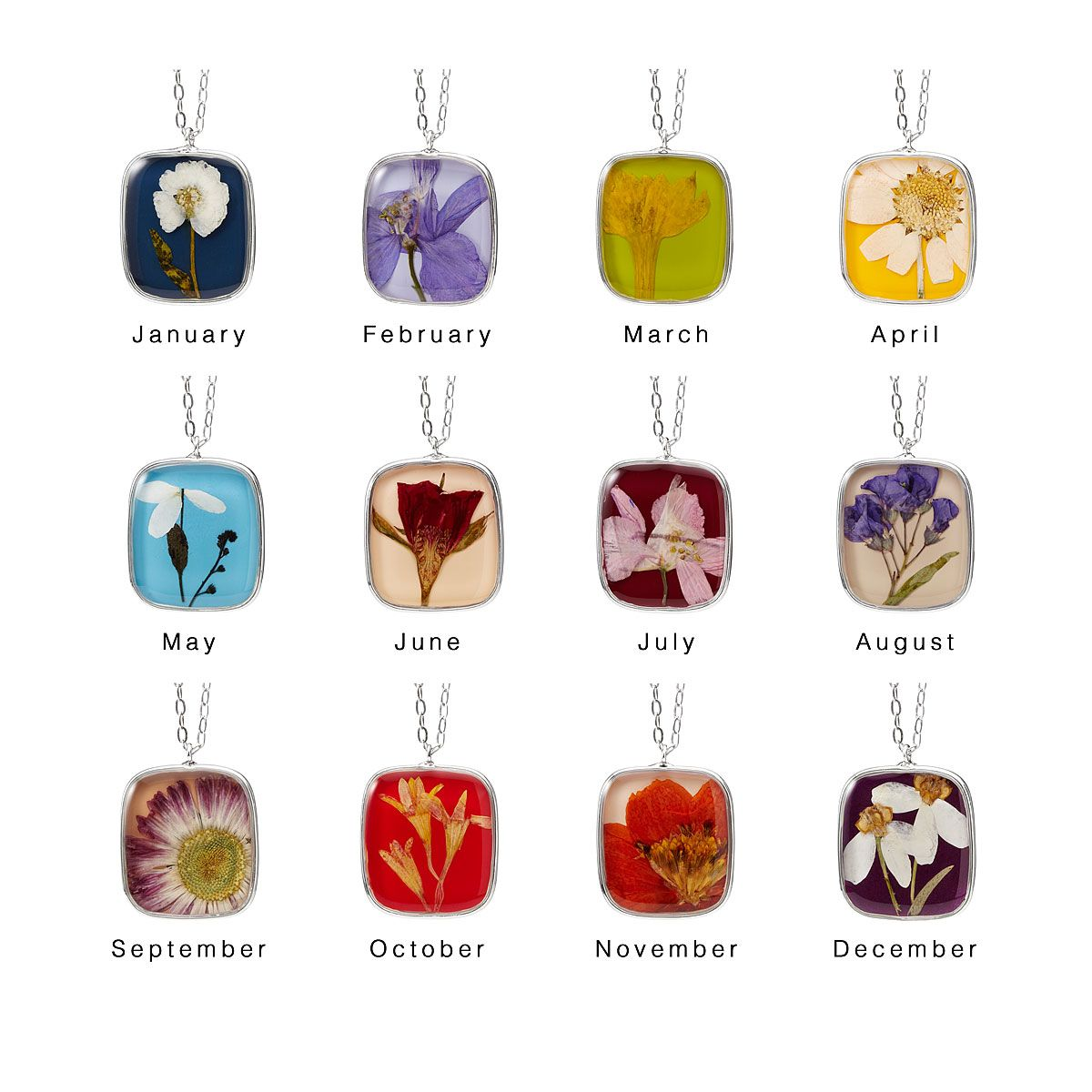 Birth Month Flower Necklace Real Flower Pendant (With