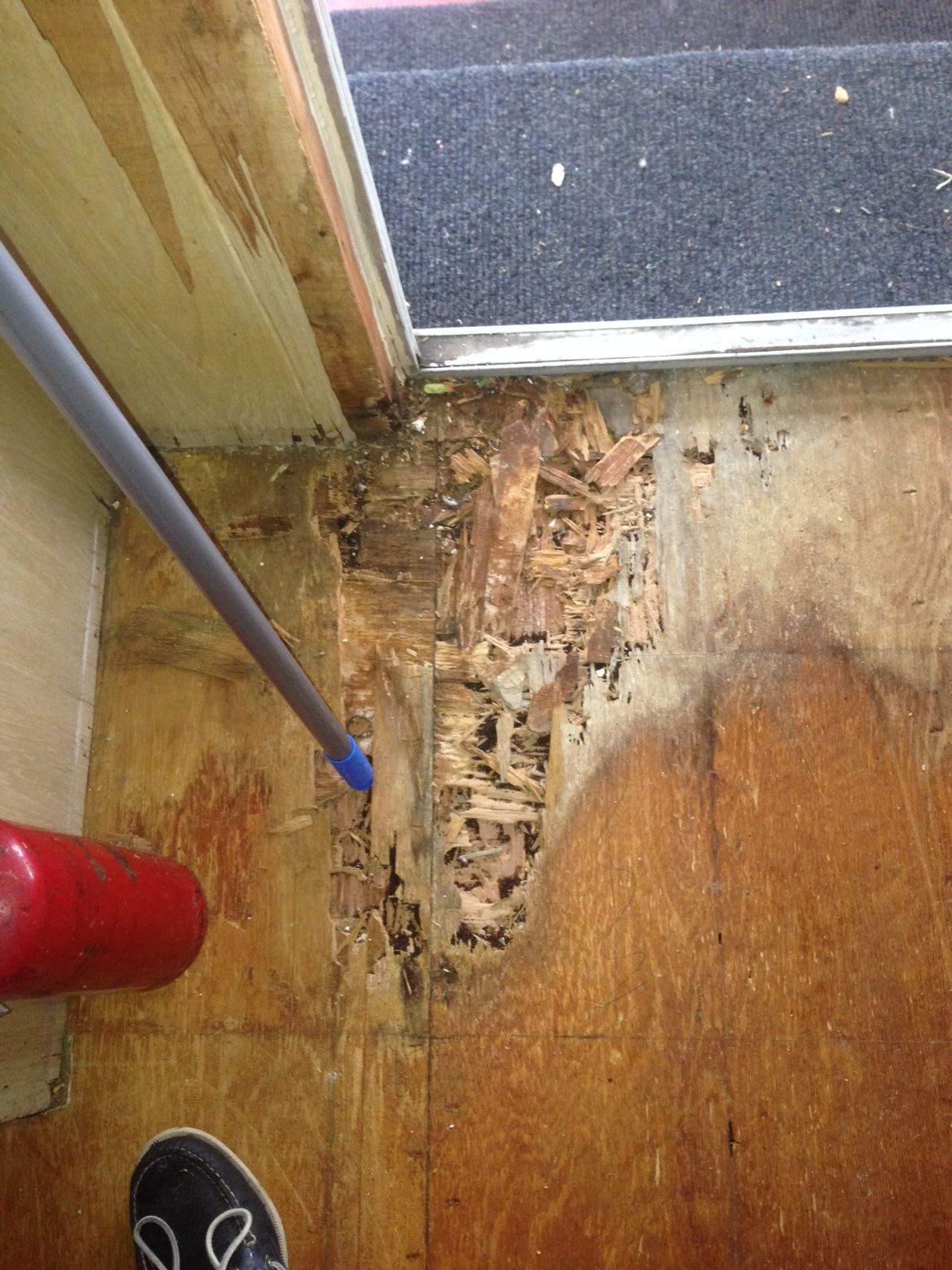 Drywood Termite Damage Here You Can See The Subfloor Of A Home Which Was Vacant For Many Years The Termites Des Termite Damage Drywood Termites Wood Termites