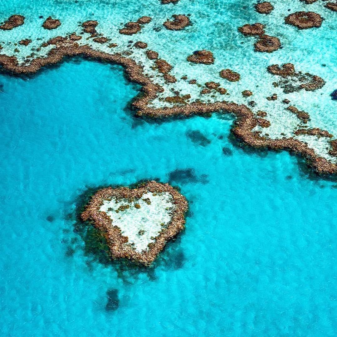Ab Nach Australien Erhalte Bei Uns Immer Die Besten Reise Deals Angebote Zu Fernreisen Urlaub Jetzt Gunstig Buche Reise Deals Great Barrier Reef Gute Reise