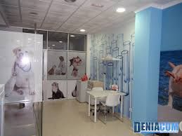 Resultado de imagen para clinica veterinaria