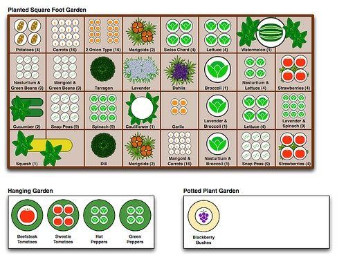 Square Foot Gardening Number Of Plant Chart