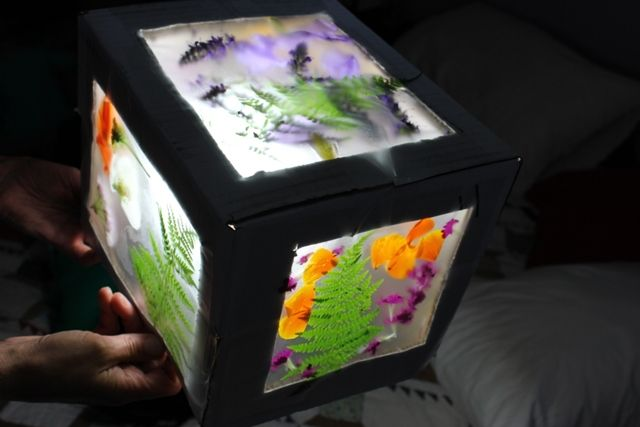 Done well, this flower box could be made into a night light.  This would be great to press flowers from a trip or nature walk.  I wonder if you could recycle a tissue box for this project.