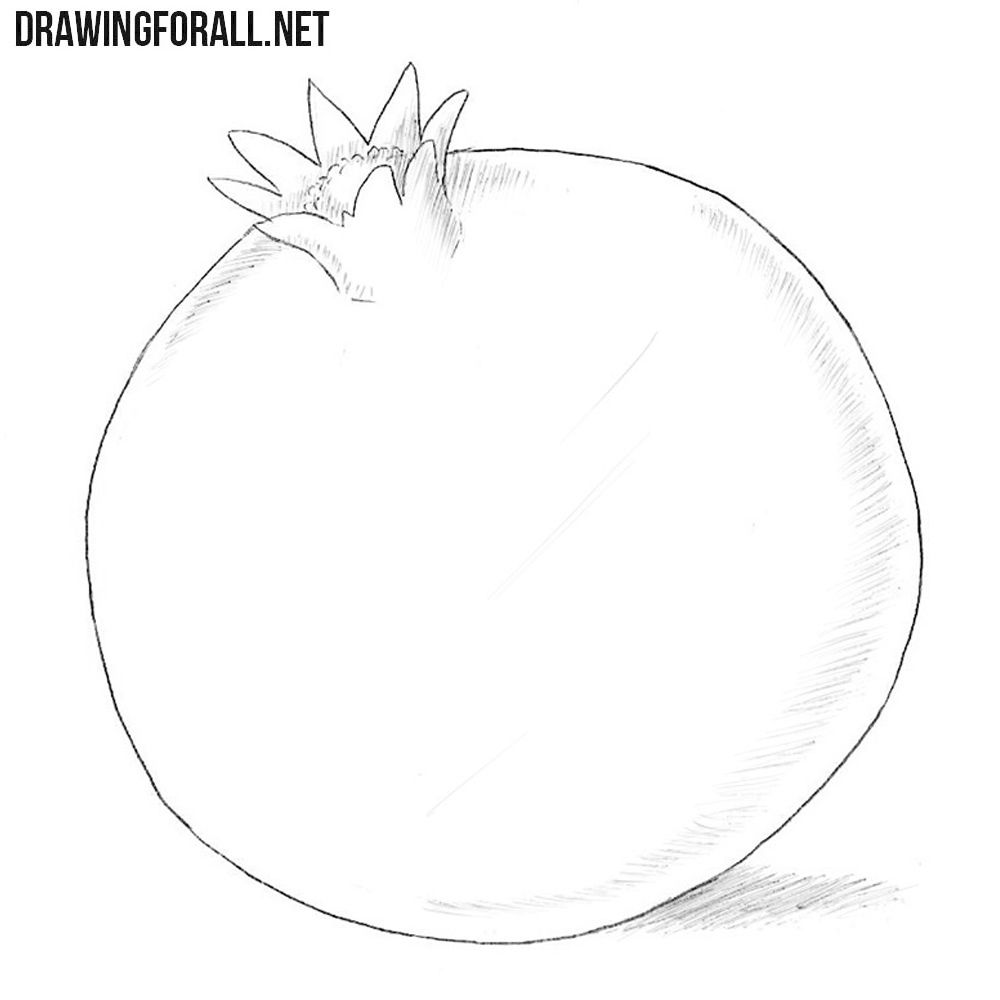 How To Draw A Pomegranate Pomegranate Drawing Fruits Drawing