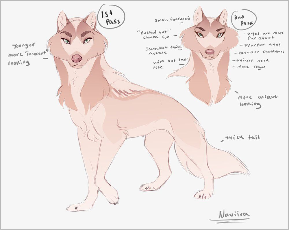 Quo The Queen Ish Regal Female Wolf Dog Design Art Wolf Character Animal Drawings